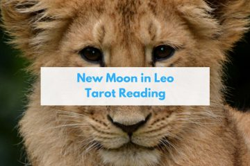 tarot leo new moon